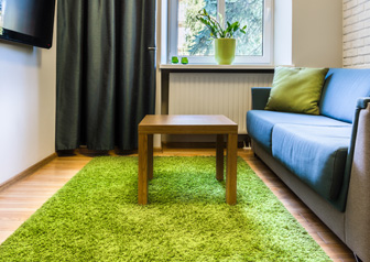Room with green rug