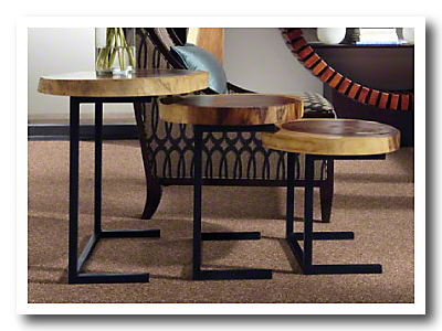 Sws cleartouch carpet savory days